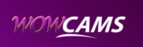 Wowcams logo